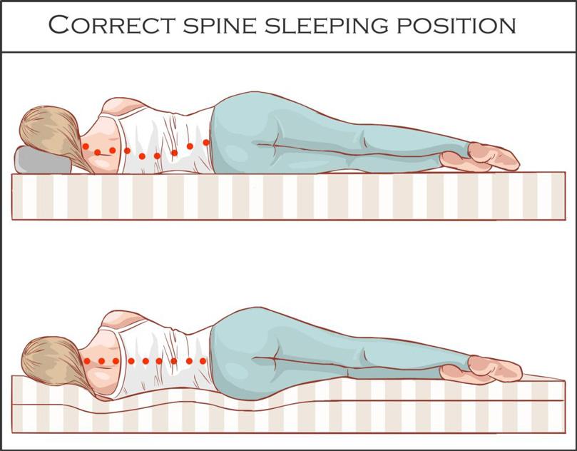 An illustration of Proper spine sleeping position